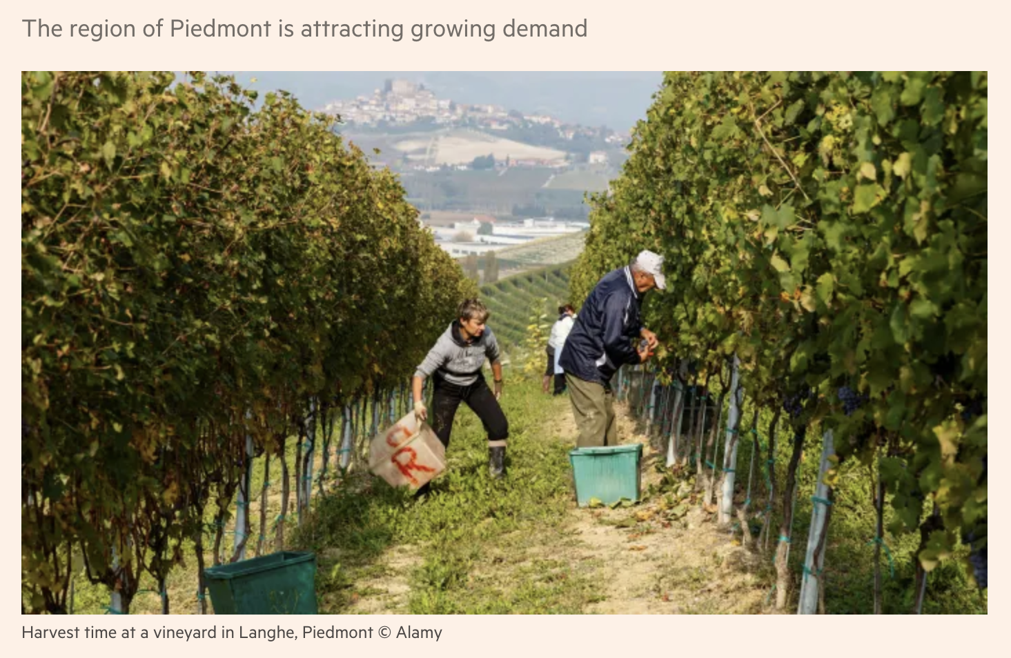 Financial Times - Italian wine investors return to ancient pedigrees